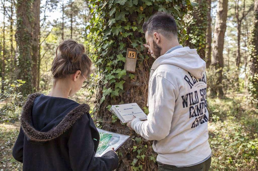 CeltAventures-Accrobranches-Adultes-Sarzeau-Presqule-de-Rhuys-Golfe-du-Morbihan-Bretagne-sud10fr