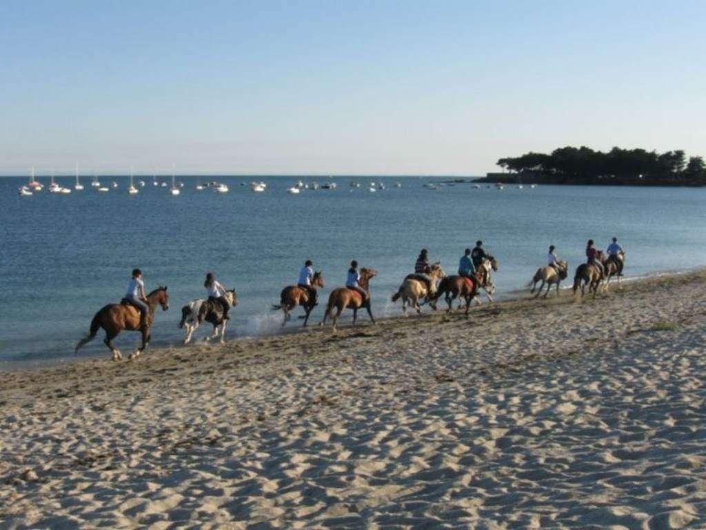Centre-Equestre-de-Kerblanquet-Sarzeau-Presqule-de-Rhuys-Golfe-du-Morbihan-Bretagne-sud0fr