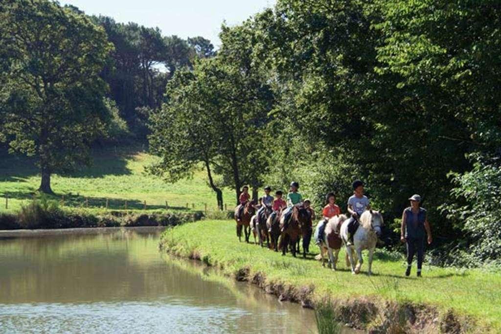 Centre-Equestre-Man-Guernehu-Baden-Golfe-du-Morbihan-Bretagne-Sud10fr