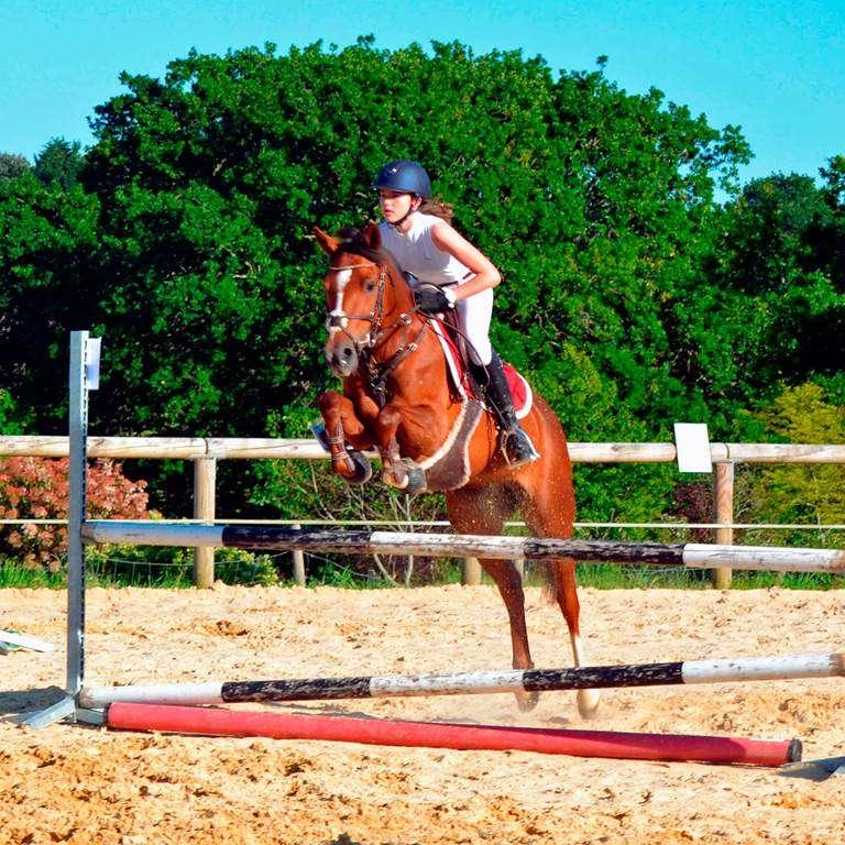 Centre-Equestre-Man-Guernehu-Baden-Golfe-du-Morbihan-Bretagne-Sud1fr