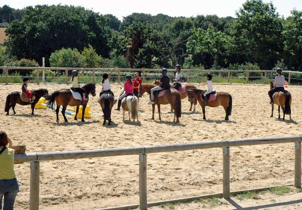 Centre-Equestre-Man-Guernehu-Baden-Golfe-du-Morbihan-Bretagne-Sud3fr
