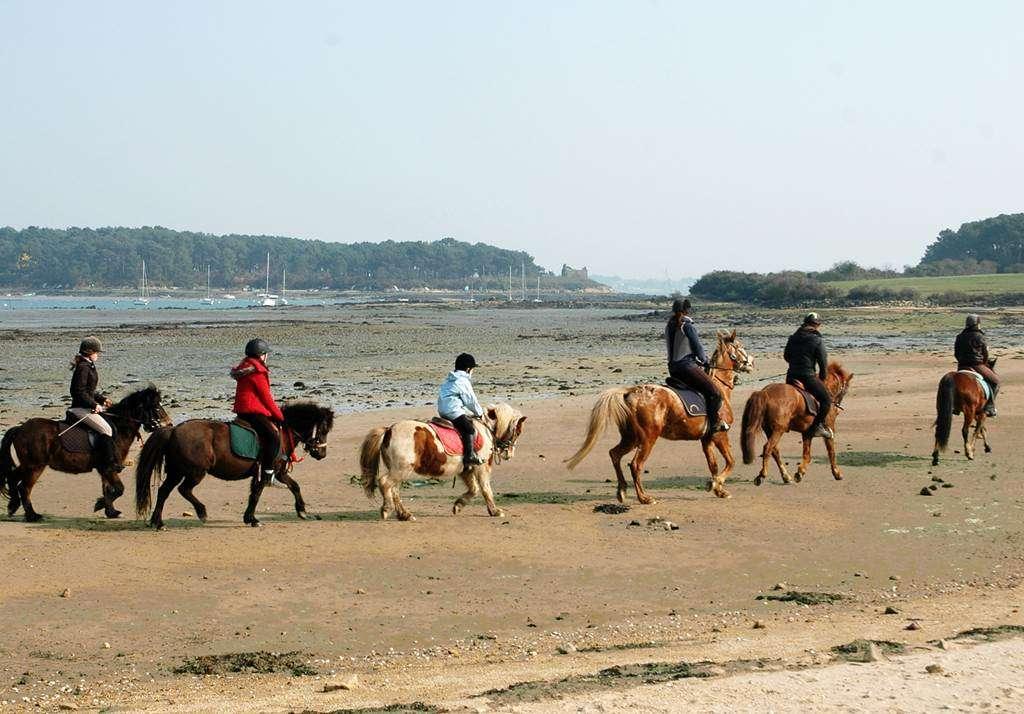 Centre-Equestre-Man-Guernehu-Baden-Golfe-du-Morbihan-Bretagne-Sud5fr