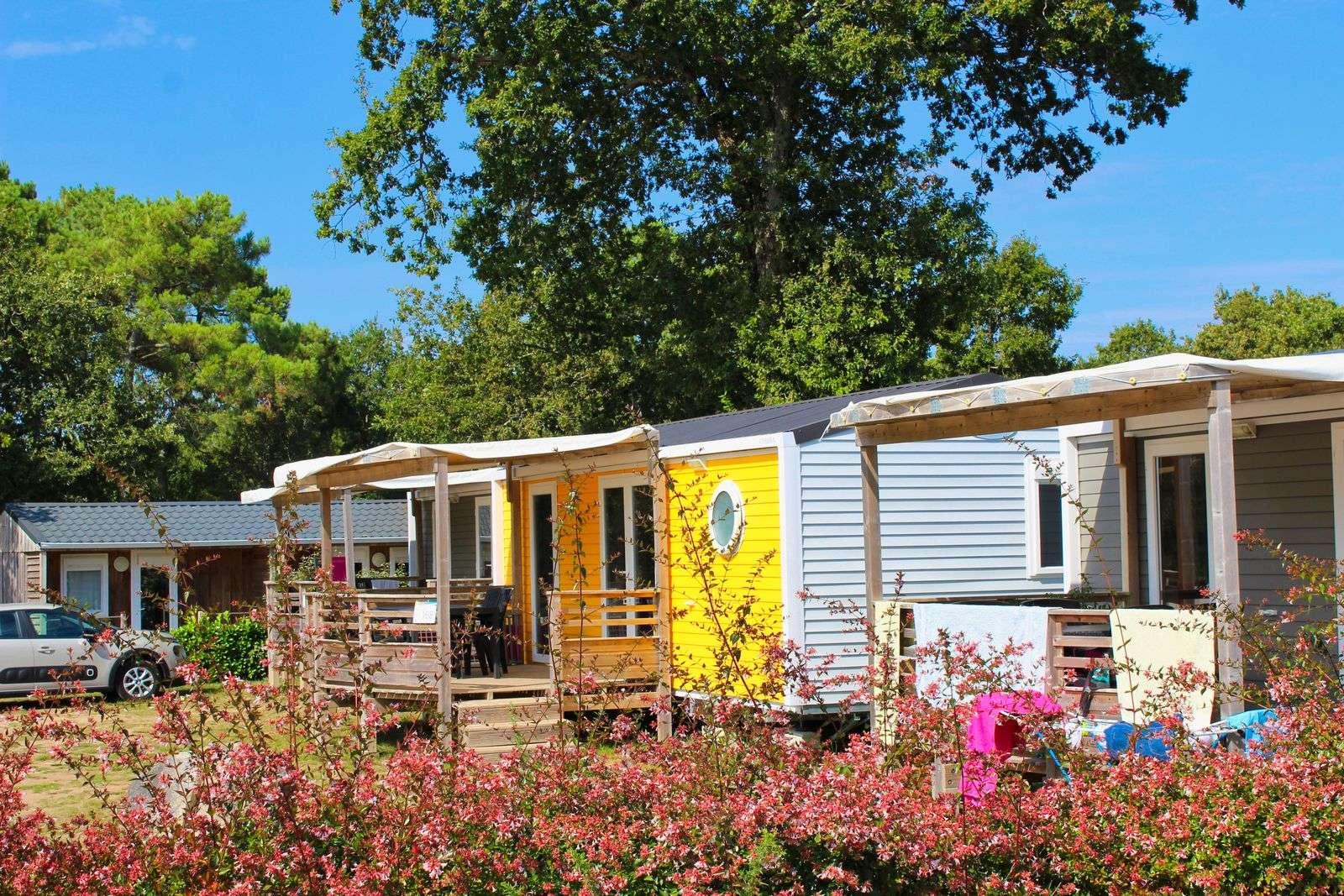 Mobil-home_interieur-camping_hebergement_camping-le-moustoir_carnac_resultat