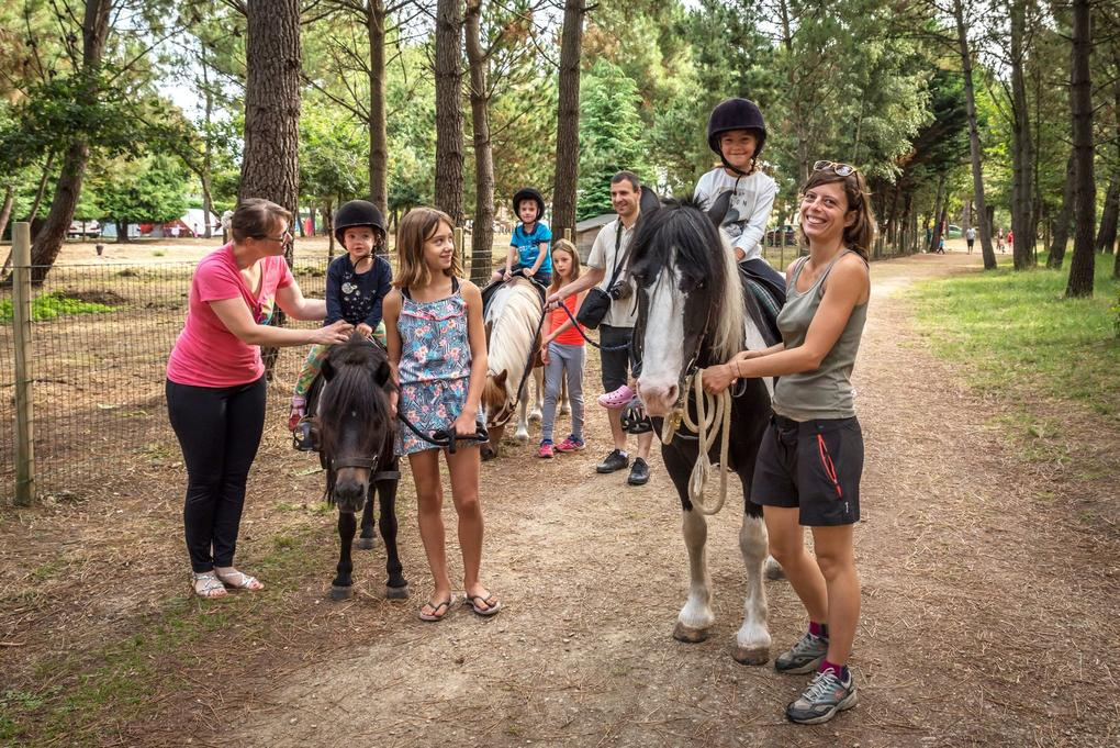 ballade-cheval_animations_balade-poney_hebergement_camping-les-bruyres_carnac
