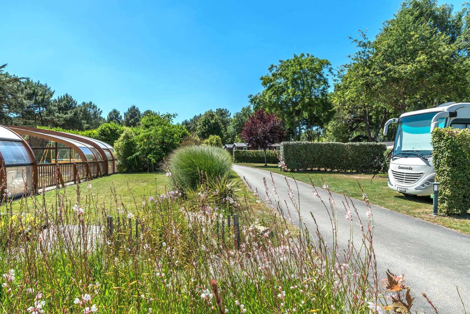 emplacement-camping-car_piscine_hebergement_hotellerie-de-plein-air_camping-les-bruyeres_carnac