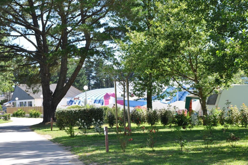 allee_camping-plijadur_la-trinite-sur-mer
