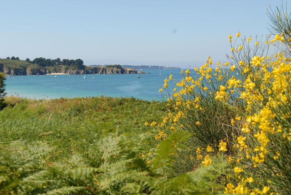 bateaux_paysage_croisieres-et-traversees-maritimes_compagnie-du-golfe_vannes