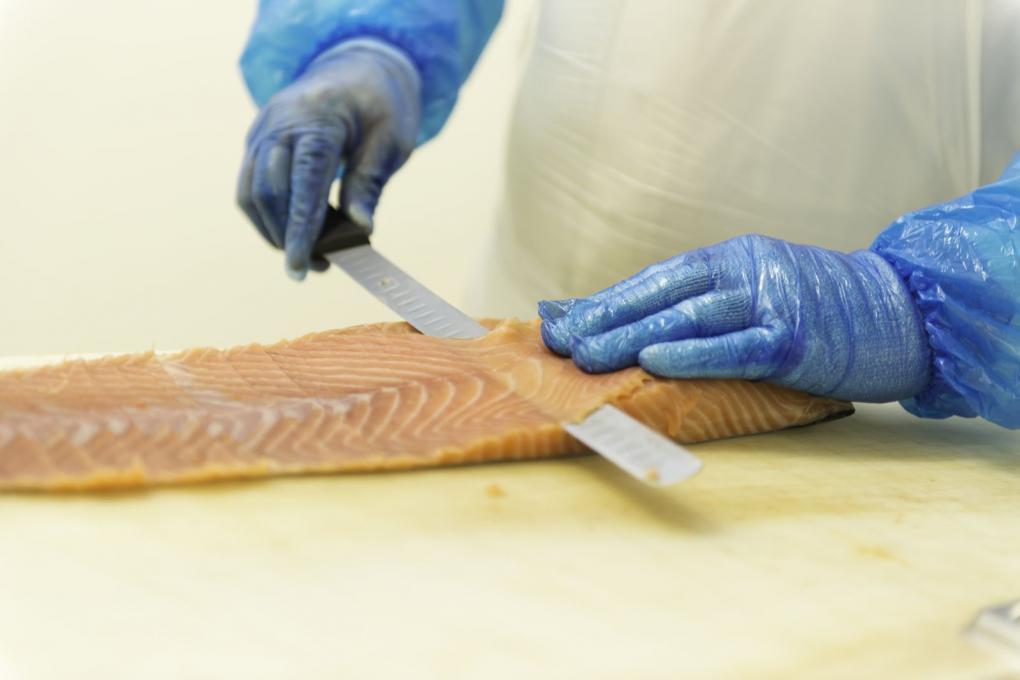 filet de saumon _ saumonerie du loch carnac
