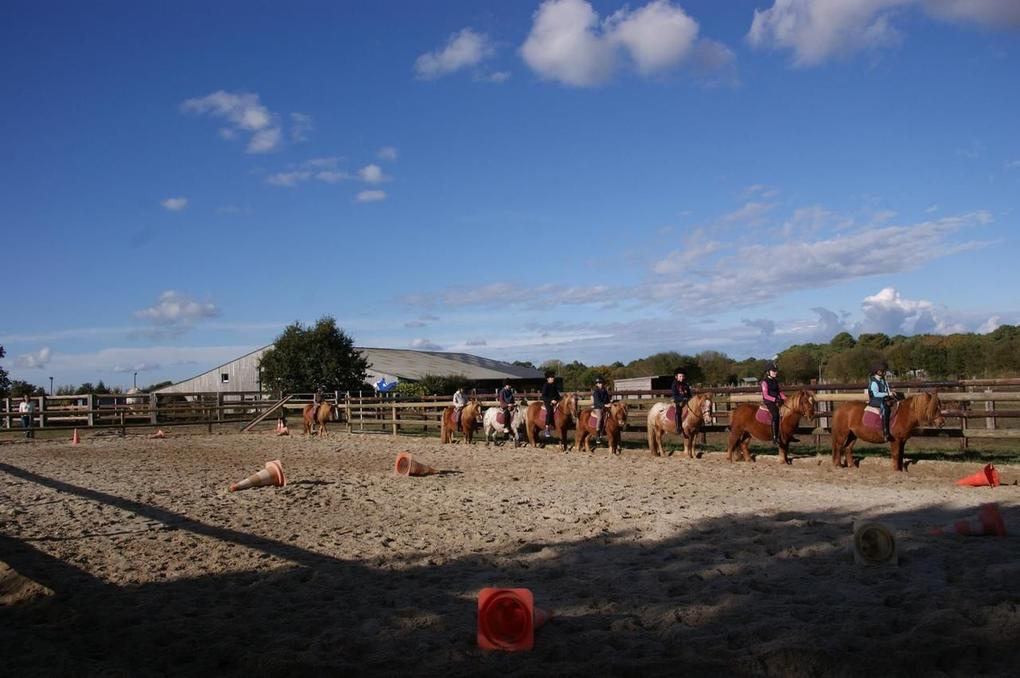 carriere-poney_loisir_equitation_carnac