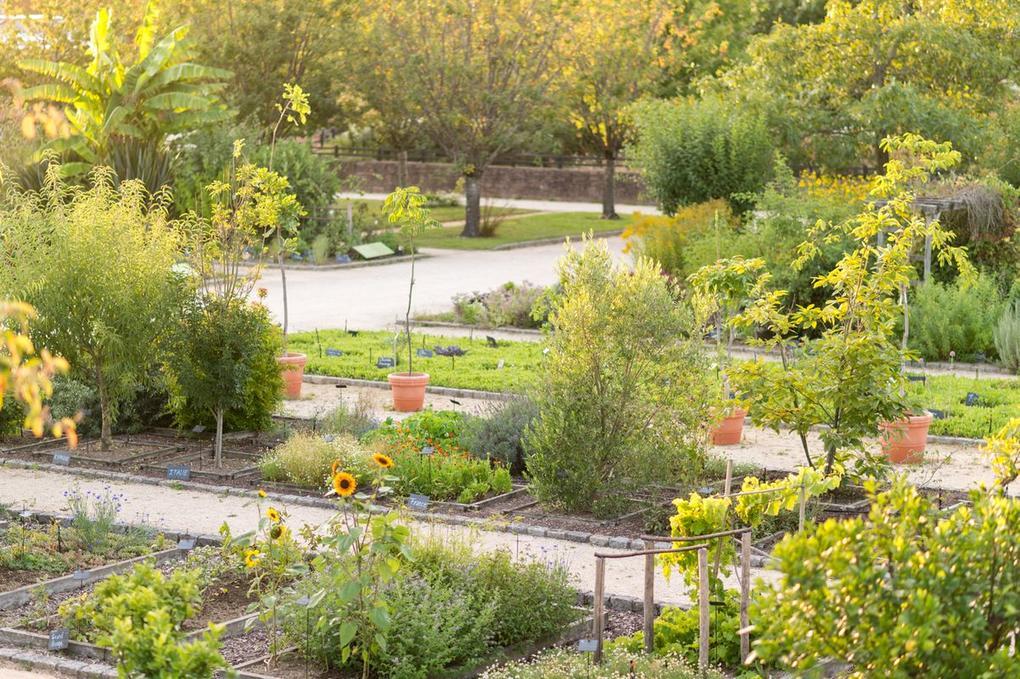 visiter un jardin botanique- Yves Rocher La Gacilly