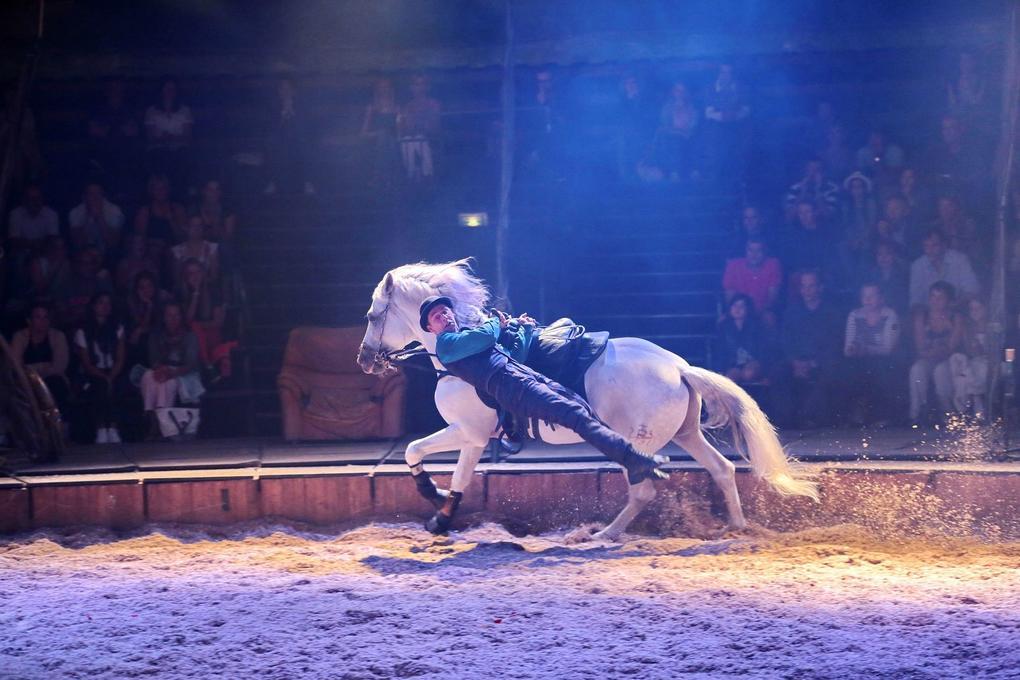 spectacle-equestre-cheval_voltige_interieur_site-a-visiter_haras-national_hennebont