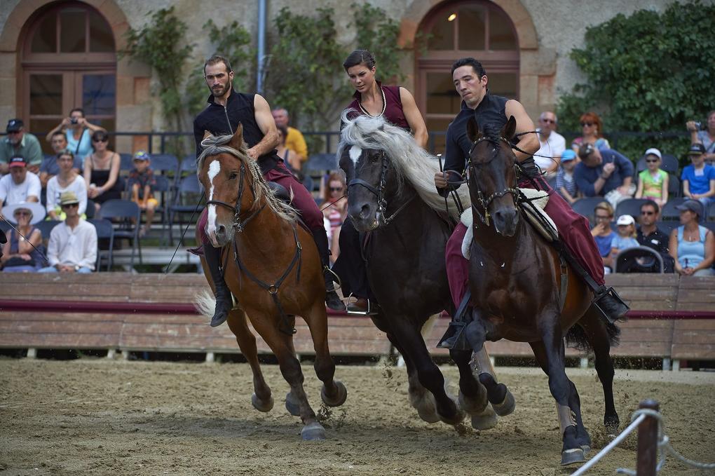 spectacle-equestre-exterieur_site-a-visiter_haras-national_hennebont