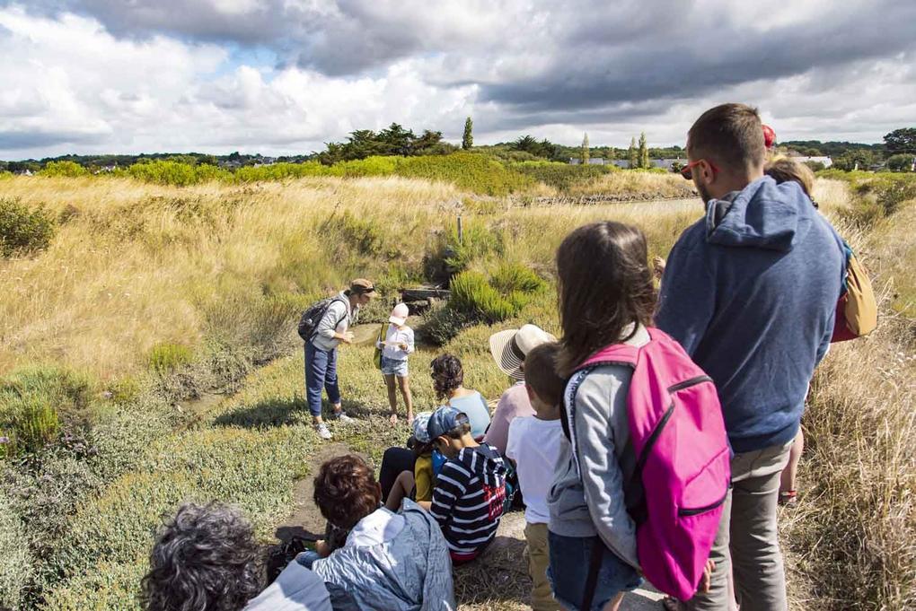 visite-guidees-des-marais-salants_famille_enfants_site-a-visiter_terre-de-sel_guerande