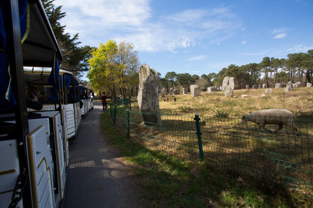 alignements-de-menhirs_petit-train-touristique_visite-guidee_carnac