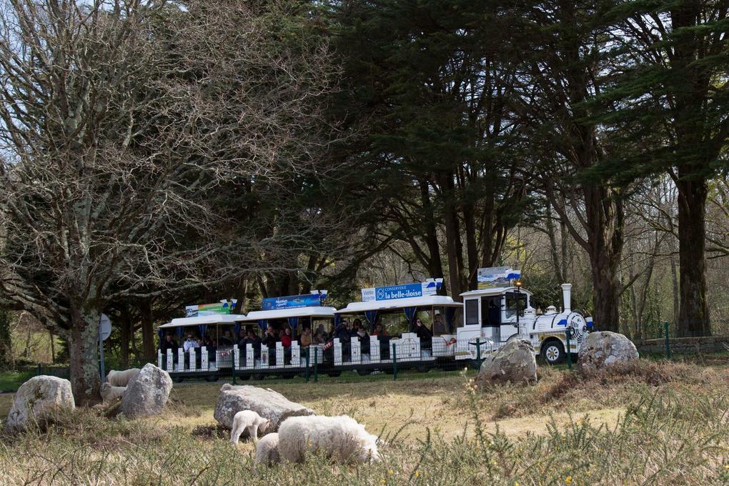 visite-guidee_petit-train-touristique_visite-commentee_carnac
