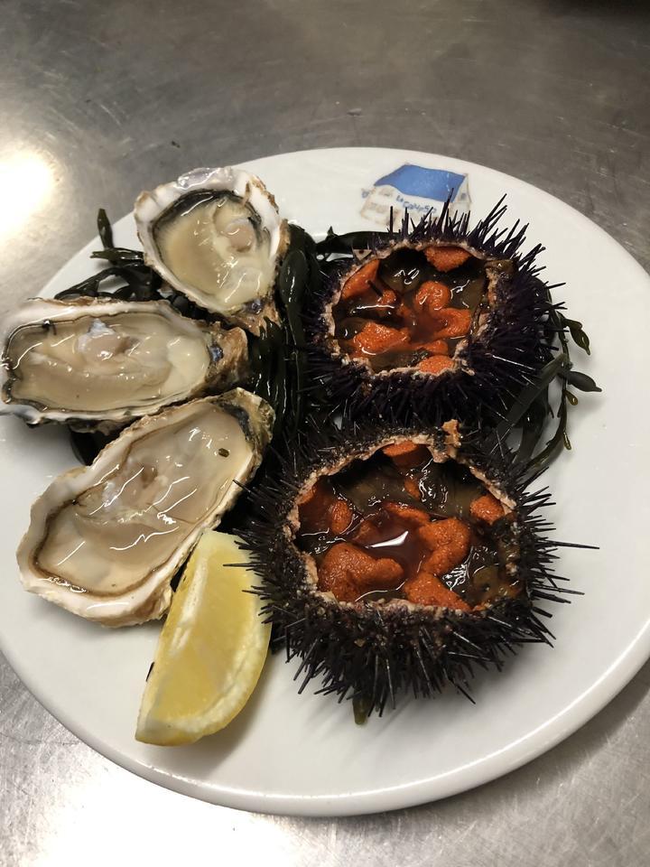 huitres_oursins_calypso_restaurant_carnac_morbihan_bretagne_sud